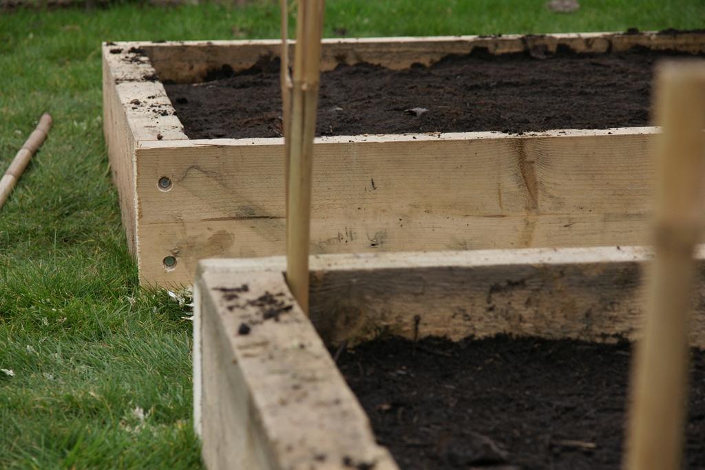 Potager au carr cr ation organisation rotation au jardin forum de jardinage for Bordure bois pour jardin potager