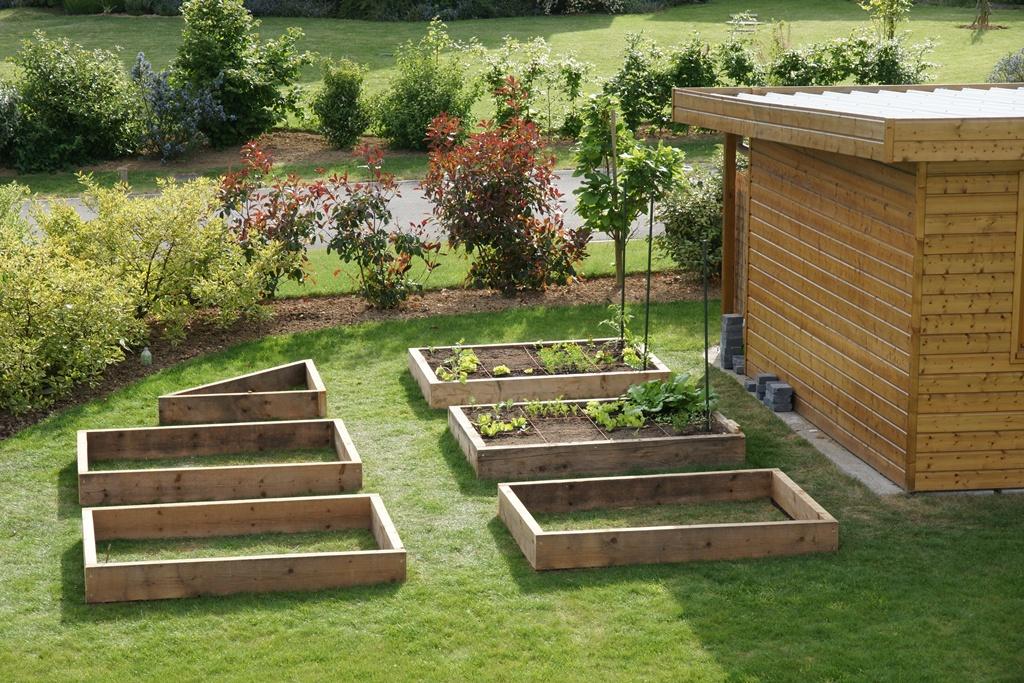 D co petit jardin potager carre saint denis 3638 saint denis de pile laccordeur saint - Jardin potager bio saint denis ...